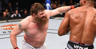 roy-nelson-ufc-big-country